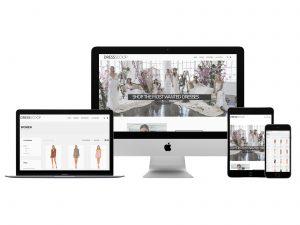 Création du site web de DressScoop