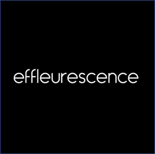 https://www.prositeweb.ca/wp-content/uploads/2020/11/effleurescence.jpg